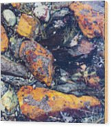 Small Rocks On The Beach Wood Print