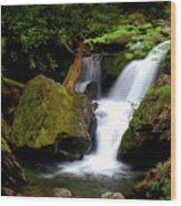Smoky Mountain Falls Wood Print