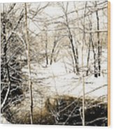 Snow-covered Stream Banks, Pennsylvania Wood Print