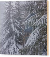 Snow Covered Trees In The North Carolina Mountains During Winter Wood Print