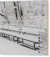 Snow In Central Park Nyc Wood Print