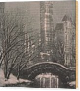 Snow In Central Park Wood Print by Tom Shropshire