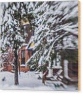 Snow... Wood Print