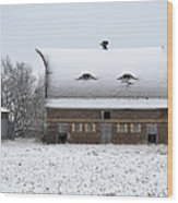 Snow On The Roof Wood Print