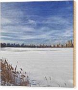 Snow Storm 2 Panorama  Wood Print