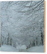 Snow Tunnel Wood Print
