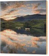Snowdon Sunrise Wood Print