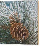 Snowy Pine Cones Wood Print