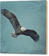 Soaring Bald Eagle Wood Print
