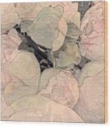 Soft Pink Peonies Wood Print