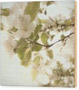 Soft White Flowers Wood Print