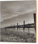 Sol Legare Dock Wood Print