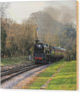 Southern Pacific Wood Print