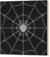 Spider No.2 Wood Print