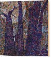 Splayed Trunks Wood Print