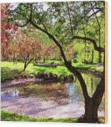 Spring At Tappan Park Pond Wood Print
