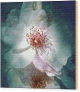 Spring Flowering Wood Print