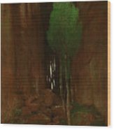 Spring In A Narrow Gorge  Wood Print