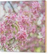Spring Lightness Wood Print