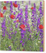 Spring Meadow With Wild Flowers Wood Print