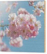 Spring Pinks Wood Print