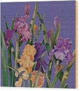 Spring Recital Wood Print