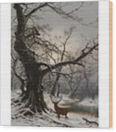 Stag In A Snow Covered Wooded Landscape Wood Print