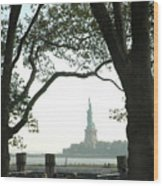 Statue Of Liberty From Ellis Island Wood Print by Frank Mari