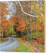 Stone Autumn Road Wood Print