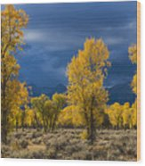 Storm Light Wood Print by Joseph Rossbach