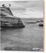 Stormy Bonsai Rock Wood Print