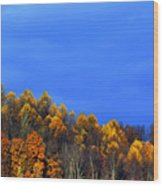 Stormy Sky Last Fall Color Wood Print by Thomas R Fletcher