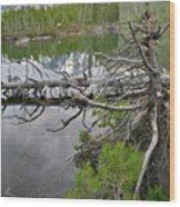 String Lake Reflection Wood Print