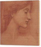 Study Of A Female Head Wood Print