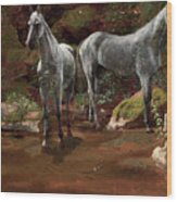 Study Of Wild Horses Wood Print
