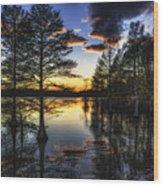Stumpy Sunset Wood Print