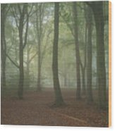 Stunning Colorful Moody Vibrant Autumn Fall Foggy Forest Landsca Wood Print