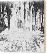 Sumie Landscape Wood Print