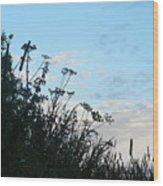 Summer Hedgerow Wood Print