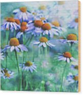 Summer Serenity Wood Print