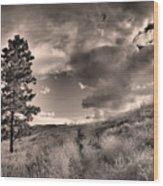 Summer Skies Wood Print