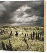 Summer Storms Wood Print