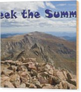 Summit Of Mount Bierstadt In The Arapahoe National Forest Wood Print