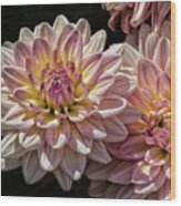 Sun And Flowers Wood Print