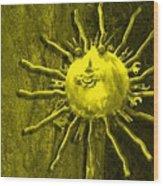 Sun Tool Wood Print
