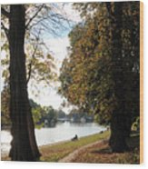 Sunbury On Thames Surrey Uk Wood Print