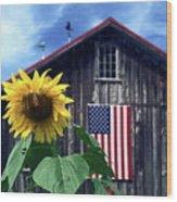 Sunflower By Barn Wood Print
