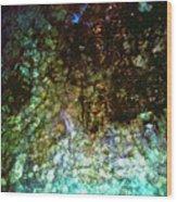Sunken Jewels Wood Print