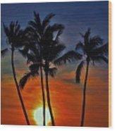 Sunlit Palms Wood Print