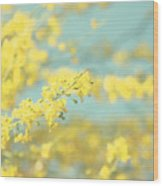 Sunny Blooms 2 Wood Print